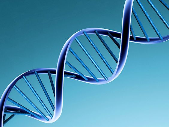 DNA says stop using LEAN!